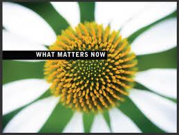 what matters flower