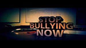 bully (5)