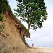 Medicare erosion