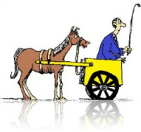 Cart (employers) before horse (learning)